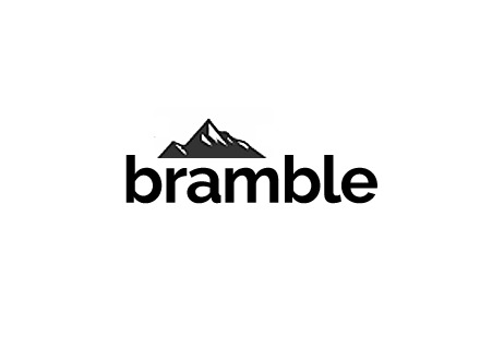 Best WordPress theme Bramble