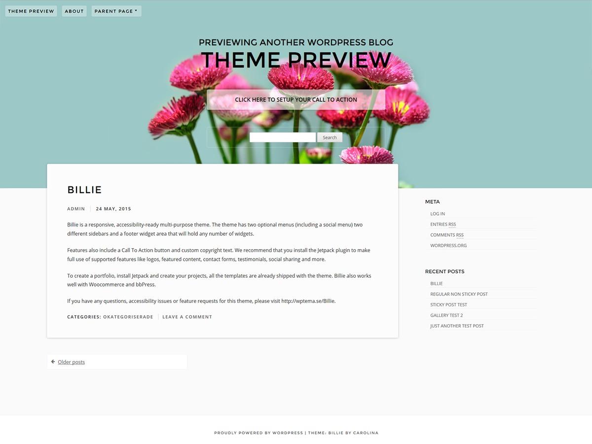 Billie best portfolio WordPress theme