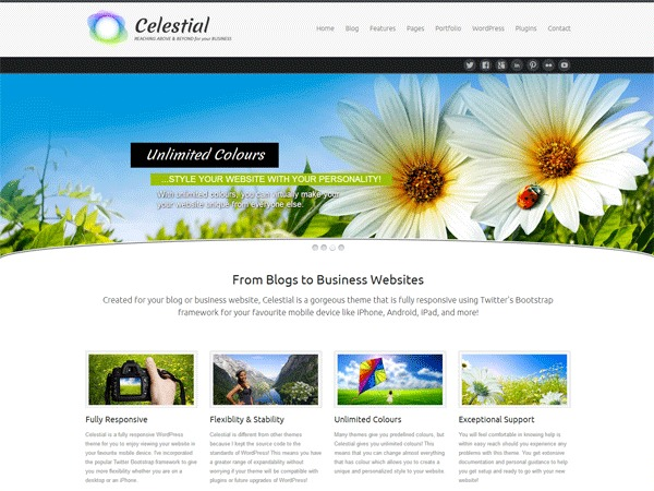 Celestial Child WordPress website template