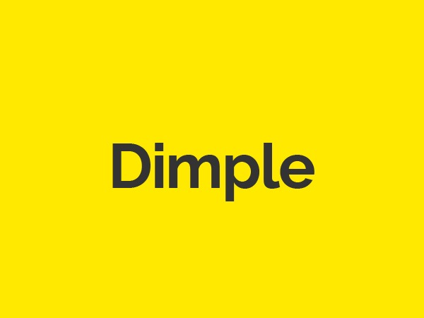 Dimple business WordPress theme