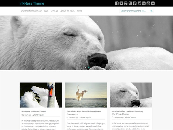 Inkness free WP theme