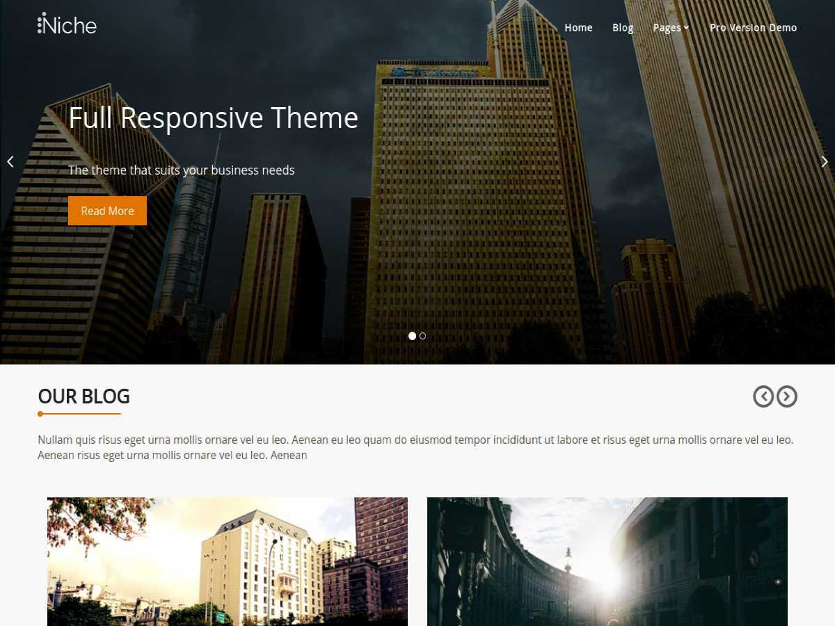 Niche free WordPress theme