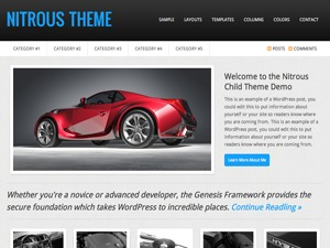 Nitrous Child Theme WP template