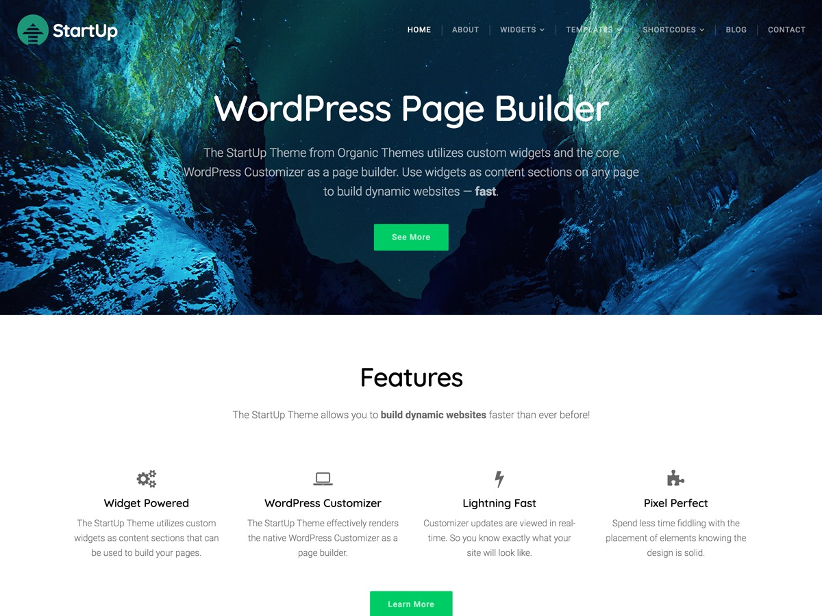 Organic Startup top WordPress theme