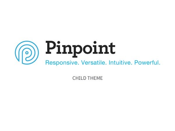 Pinpoint Child Theme WordPress template