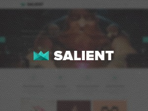 Salient (shared on wplocker.com) WordPress theme