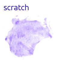 Scratch WordPress theme design