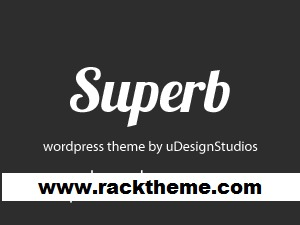 Superb business WordPress theme