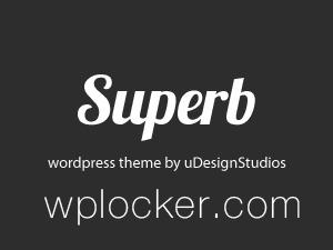 Superb business WordPress theme