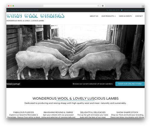 Template WordPress Modality Pro - windywoolwindings.com