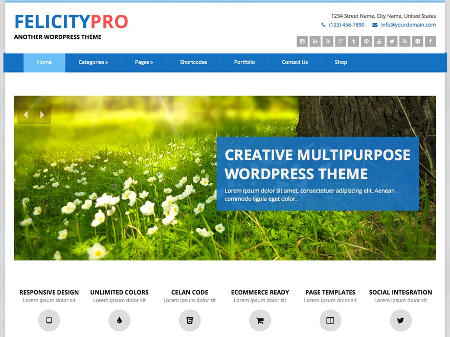 Theme WordPress Felicity Pro