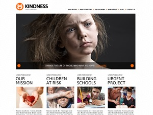 theme45009 WordPress theme