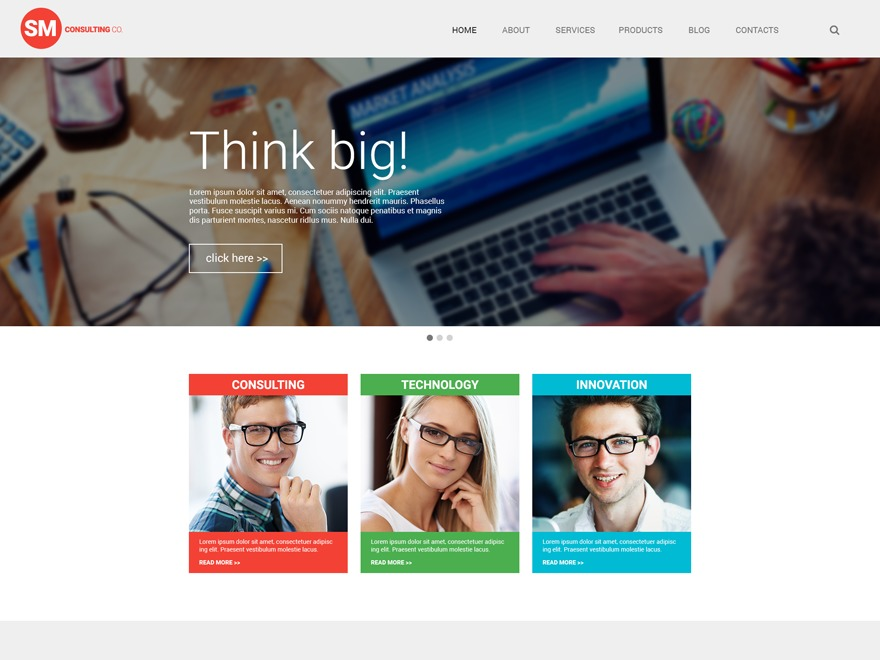 theme55944 WordPress theme
