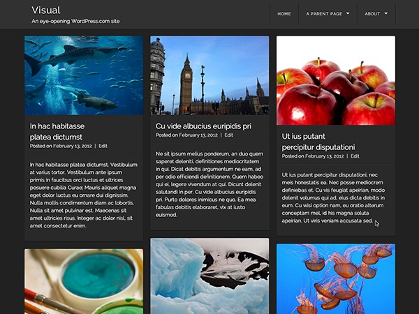 Visual - WordPress.com best WordPress gallery
