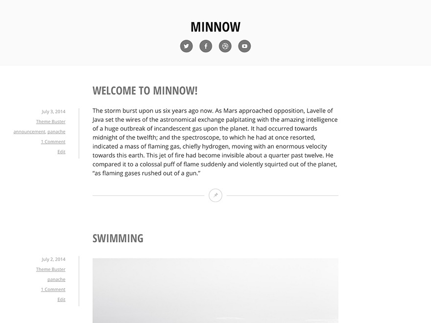 WordPress theme Minnow