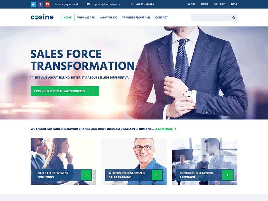 WordPress website template Cosine