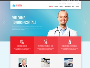 WP template theme47536