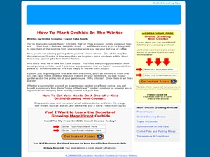 WP theme Niche Profit Press V2