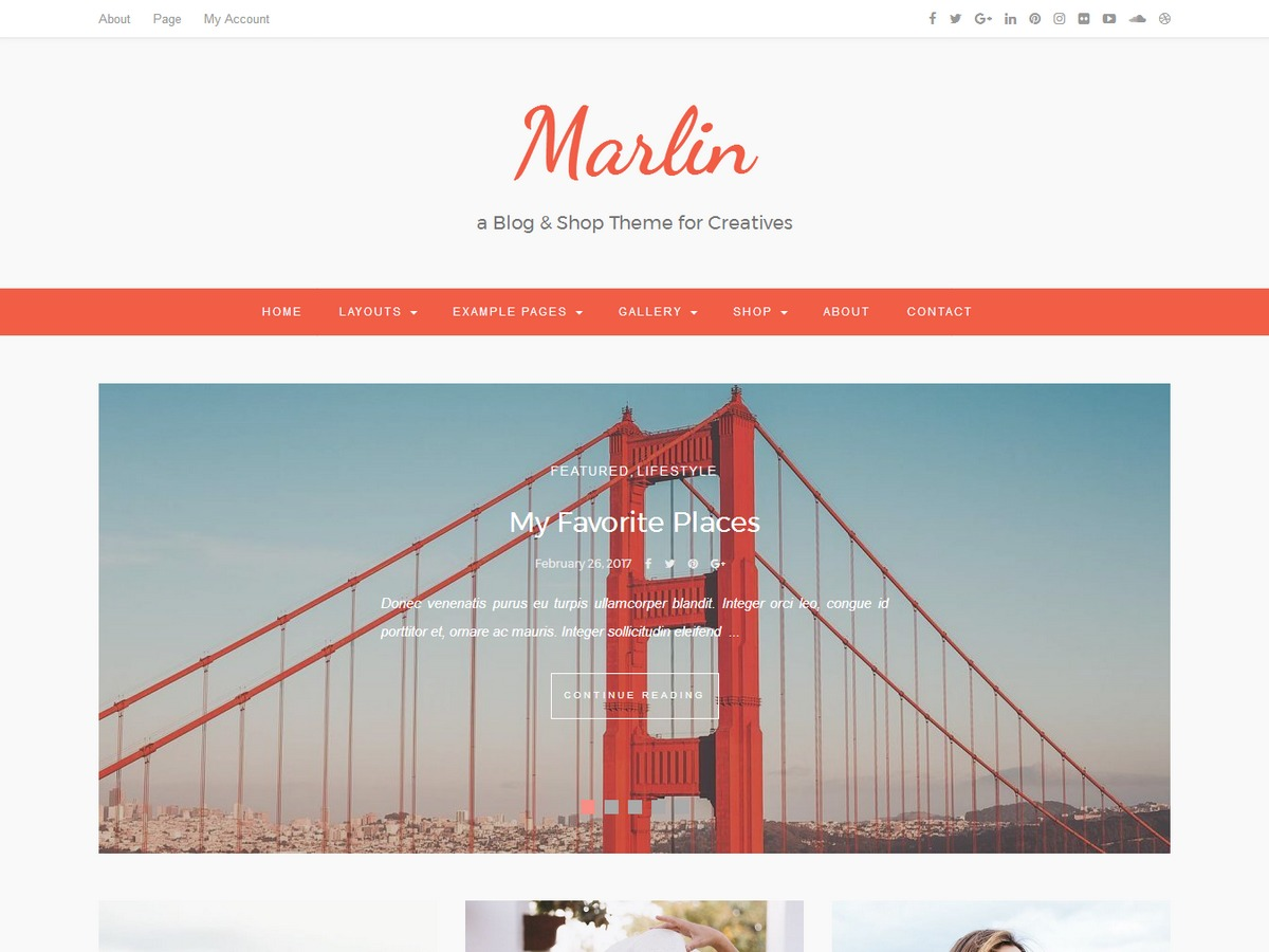 Marlin Child theme WordPress