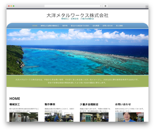 Preferential Lite best free WordPress theme - taiyometal.com
