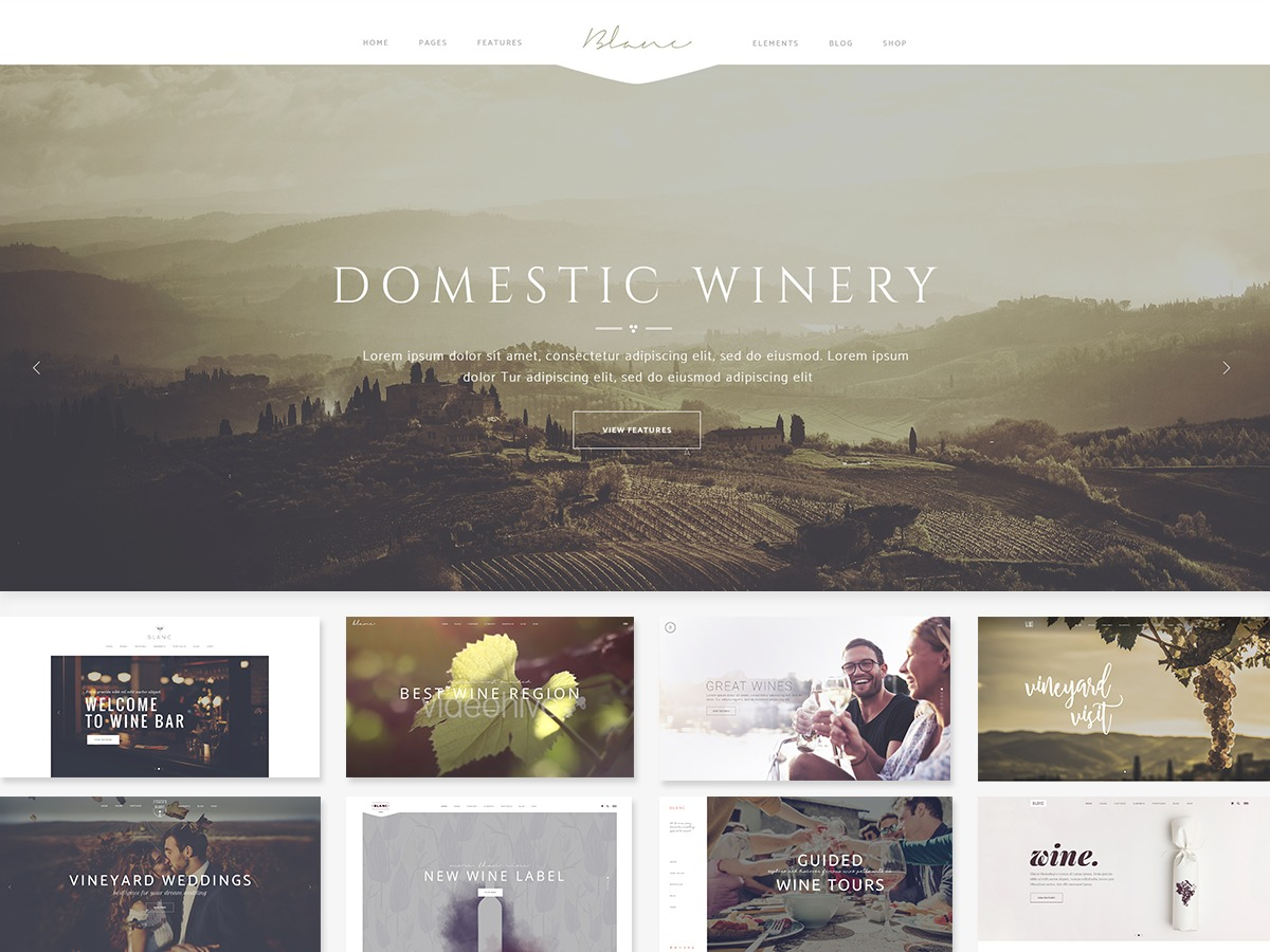 Vino Child WordPress template