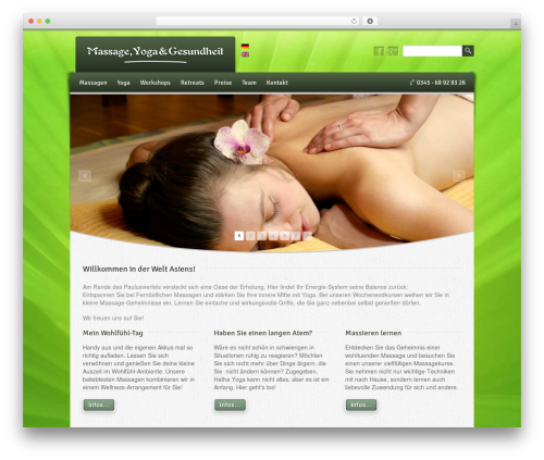 Free WordPress Newsletter plugin - thaimassage-halle.com