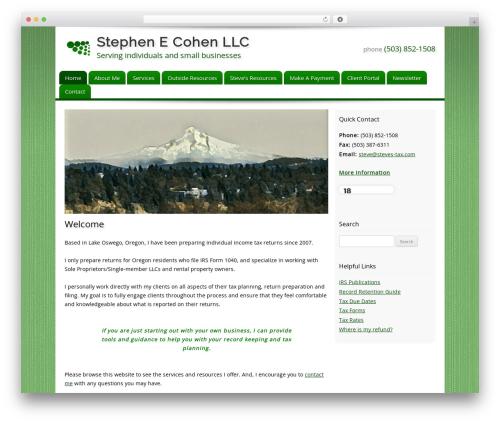 Customized WordPress page template - steves-tax.com