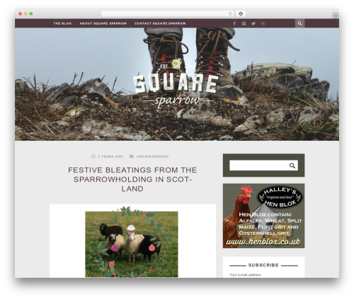 ST Squirrel food WordPress theme - square-sparrow.com