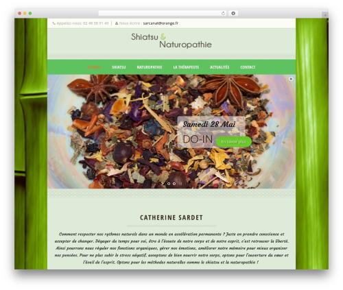 Dream Spa WordPress theme - shiatsu-naturopathie-en-berry.com