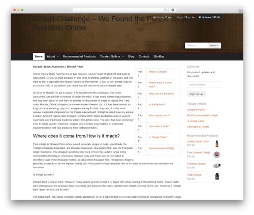 Xing WordPress theme - shilajitshilajeet.com