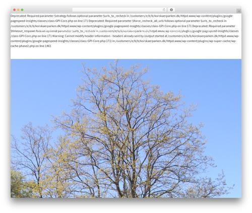 Sydney free WordPress theme - korskaerparken.dk