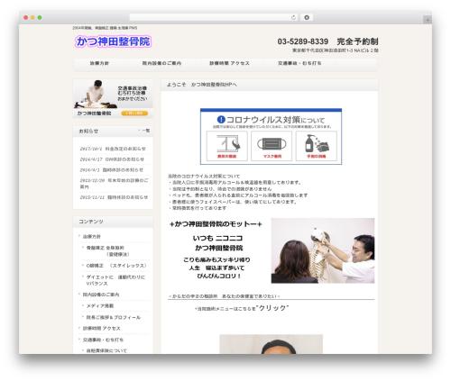 responsive_048 WordPress website template - katu4.com