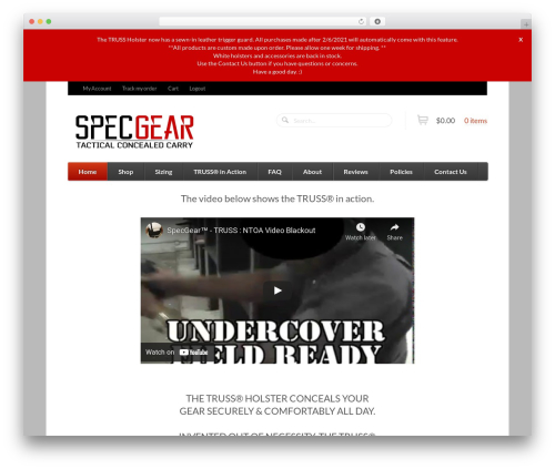 Function best WordPress theme - specgear.com