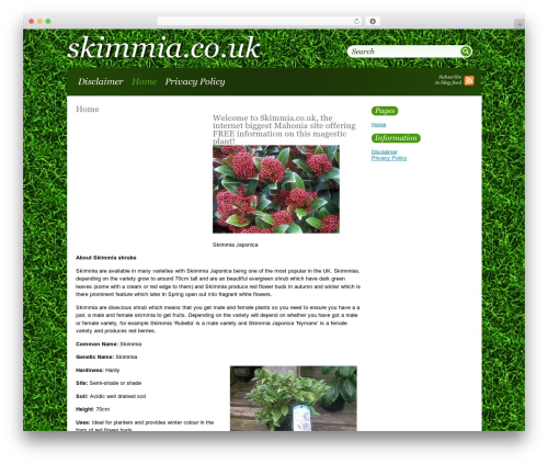 Greenblog WP template - skimmia.co.uk
