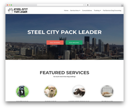 Zerif Lite theme free download - steelcitypackleader.com