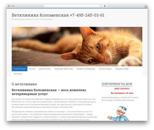 Accelerate WordPress theme download - zabotapetmsc.ru