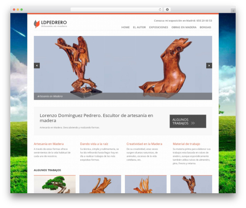 Theme WordPress Revolution - ldpedrero.es