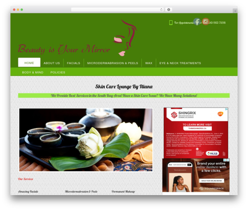 Appointway WordPress theme free download - skincareloungebyiliana.com