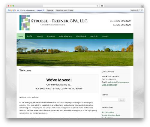 Customized business WordPress theme - strobelfreinercpa.com