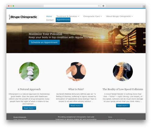Customizr free WP theme - strupechiropractic.com