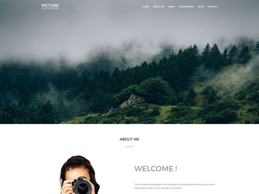 Candy Picture WordPress website template