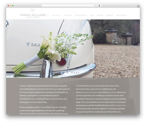 Free WordPress Google Analyticator plugin - tarniawilliams.co.uk