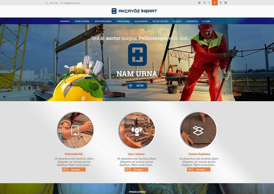 Medanis WordPress theme design