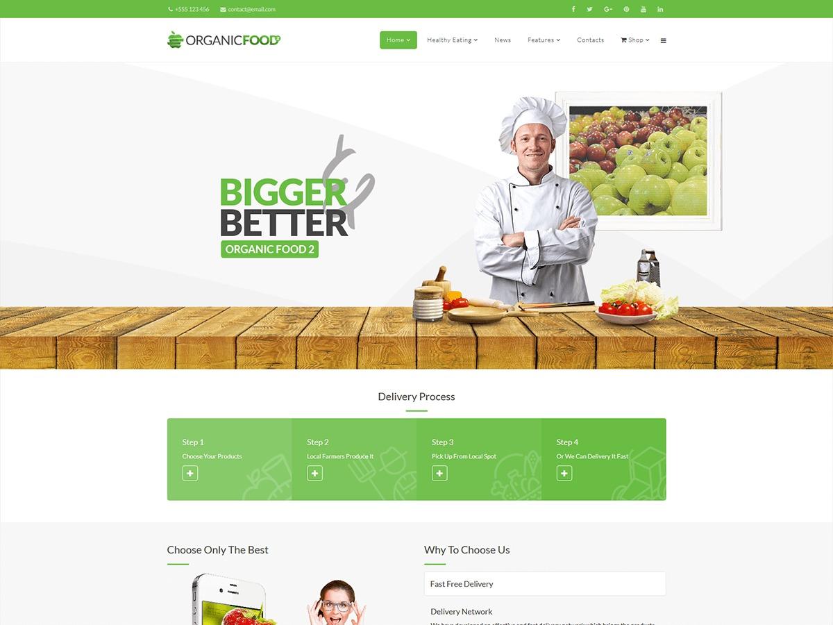 Red Organicfood food WordPress theme