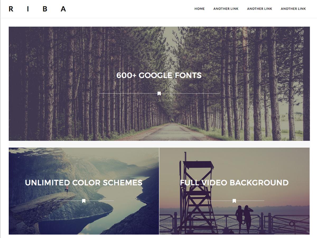Riba Pro WordPress gallery theme