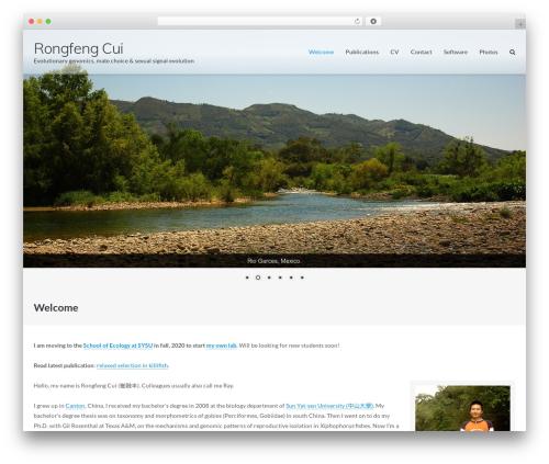 Ultra theme WordPress free - fish.raycui.com