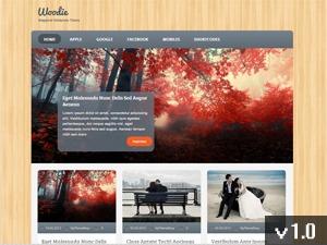 Woodie WordPress magazine theme