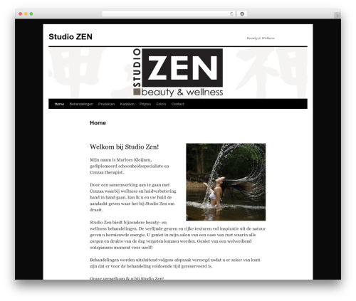 Twenty Ten theme free download - studiozen.nl