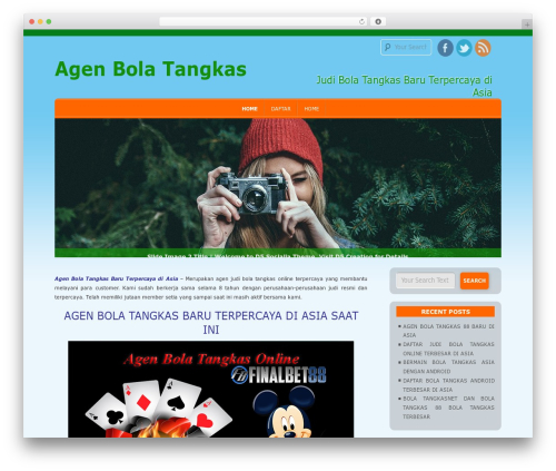 D5 Socialia WordPress theme download - sportbola.net
