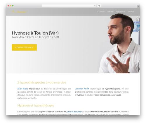 Free WordPress SEO SearchTerms Admin plugin - soushypnose.fr